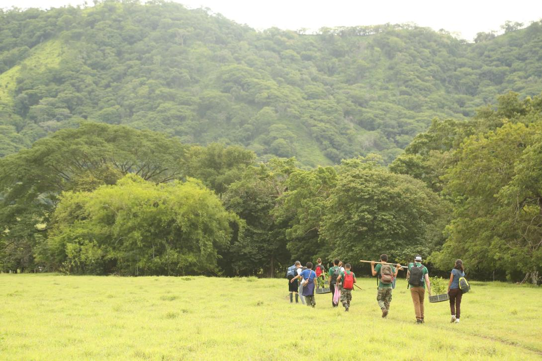 Conservation volunteers walk through the forest after assisting with reforestation efforts in Costa Rica.